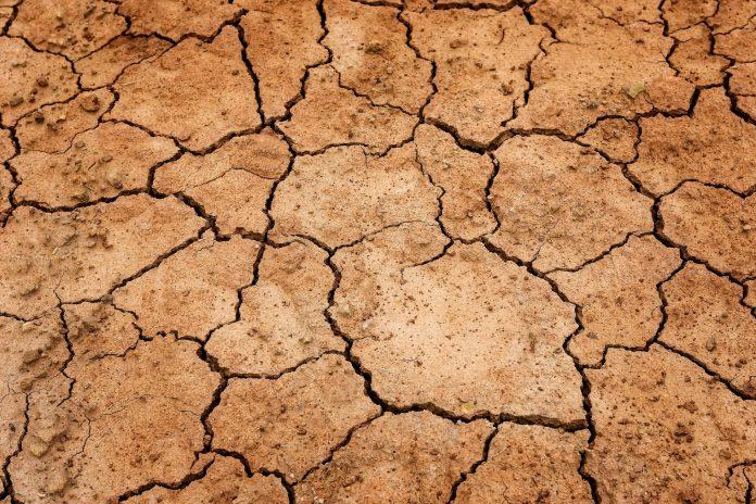 ablution sèche